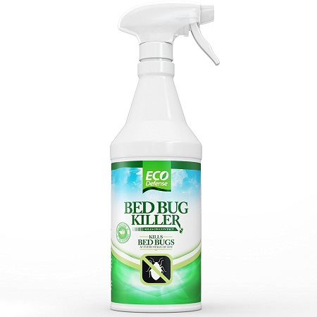 bed bug pesticide